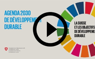 Image Symbolique Agenda 2030 Video