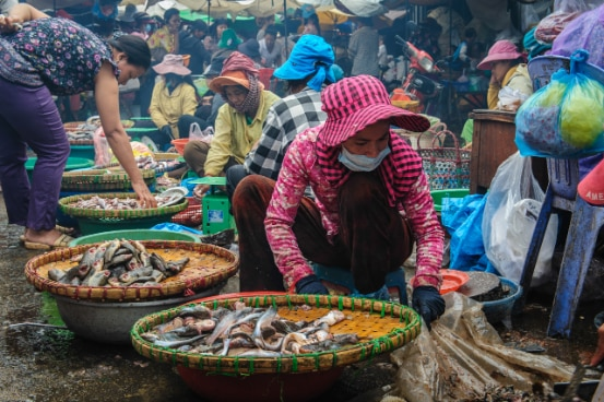 Fish market in Kratie, Cambodia