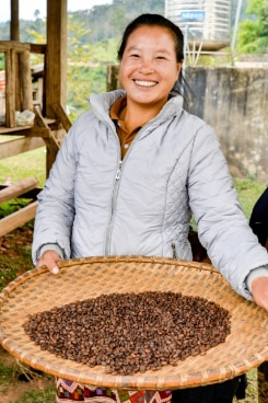 Ms Seaumkham Lertmanyphan, a member of the Keoset Community Coffee in Khoun district, Xieng Khuang province, Lao PDR.