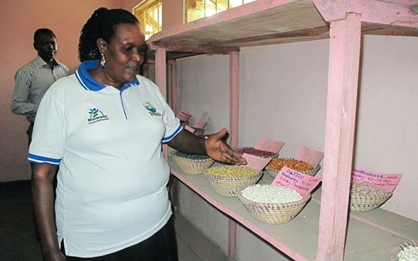 A farmer explains the characteristics of different types of beans stored on a pink rack beside her in the seed bank in Kiziba.
