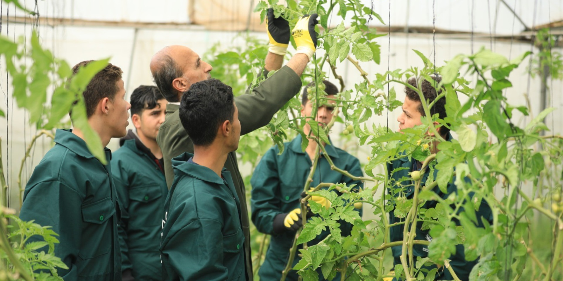 At an agricultural school, a teacher explains a plant to young men.