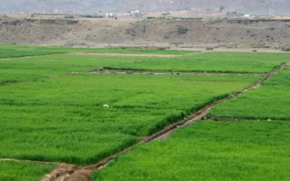 Newly irrigated agricultural land in Zazi Maydan district, Khost