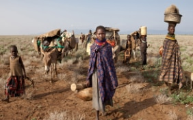 Symbolic image of a young african girl in front of packed mules in the desert.