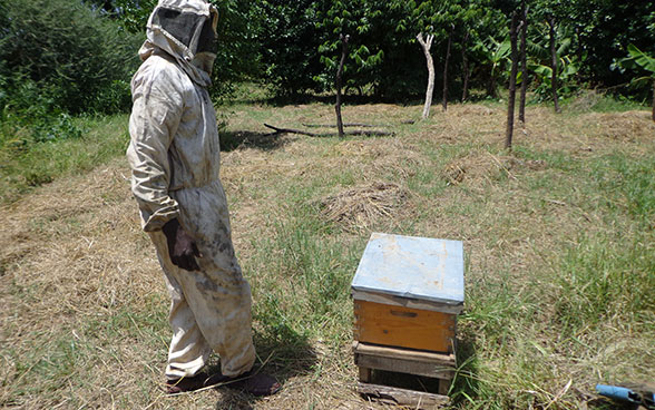 A beekeeper in Darfur in Sudan, standing beside a wooden box full of bees.